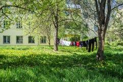 Schone kleren die in de zonneschijn op een kabel in openlucht drogen Stock Fotografie