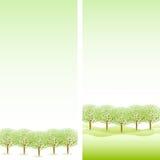 Schone verse groene illustraties als achtergrond Stock Afbeelding