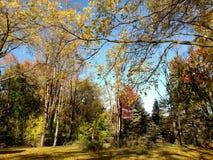 Schongebiet von Michigan Lizenzfreie Stockbilder