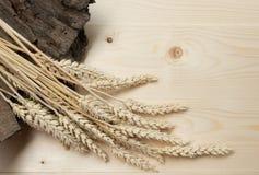 Schoof van Tarwe over Houten Achtergrond Het concept van de oogst De herfst verlaat grens met diverse groenten op witte achtergro stock afbeeldingen