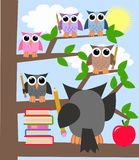 School. Illustration of a school class with colorful owls Royalty Free Stock Photo