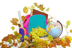 School accessories with grapes Royalty Free Stock Images