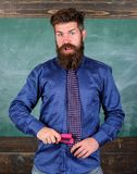 School accident prevention. Teacher bearded man with pink stapler chalkboard background. School stationery. Man scruffy. Use stapler dangerous way. Hipster royalty free stock images