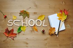 School autumn background Stock Photography