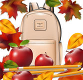 School bag and autumn leaves. Back to school concept background Stock Photography