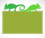 School blackboard with chameleon Royalty Free Stock Photo