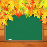 School board and autumn maple leaves Stock Photography