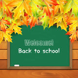 School board and autumn maple leaves Royalty Free Stock Image