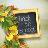 School board with the inscription `back to school`. And autumn leaves around it, on the blue wooden background. School background Stock Photos