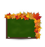 School board with maple leaves  Royalty Free Stock Photos