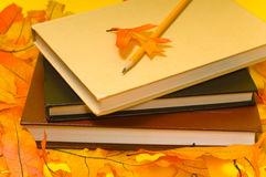 School books and Autumn. Decorations including a pencil and oranges oak leaves royalty free stock image
