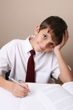 School Boy stock photo