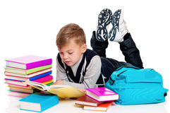 School boy with books Royalty Free Stock Photos