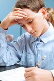School Boy Concentrates on Standardized Test. Cute adolescent school boy concentrates while taking a standardized test royalty free stock image
