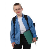 School boy in glasses Royalty Free Stock Photography