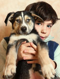 School boy and his  little puppy look to each other Stock Image