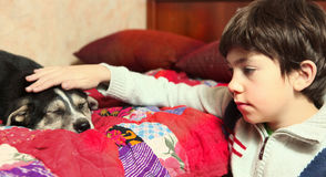 School boy and his  little puppy look to each other Royalty Free Stock Photography