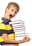 School boy is holding books Royalty Free Stock Photos