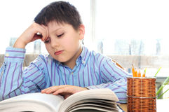 School boy studying. Serious school boy studying with a book Stock Photo