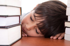School boy tired of studying sleeping Stock Photography