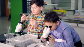 The school boys working in the science laboratory. Close-up. 4K. stock video footage