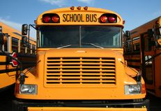 School bus. The front view of a yellow public school bus with a blue sky background and 2 buses on either side stock image