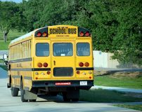 School Bus. Yellow school bus on a leafy suburban street Royalty Free Stock Image