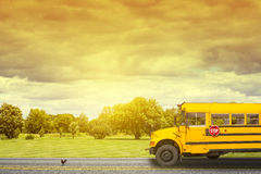 School Bus. On american country road in the morning Royalty Free Stock Photo