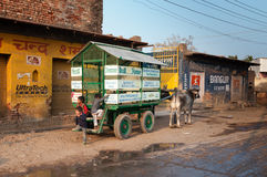 School bus is bullock cart with schoolchildren on the road in Vrindavan Royalty Free Stock Photos
