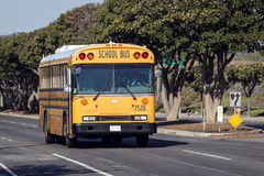 School bus. Driving on road, front view Stock Image