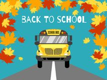 School bus front view vector illustration. Back to school. royalty free illustration