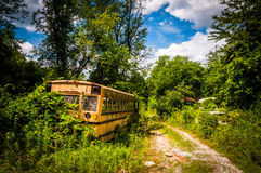 School bus in a junkyard. Stock Image