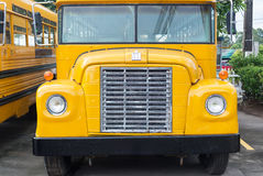 School bus in parking stay for kid Stock Photography
