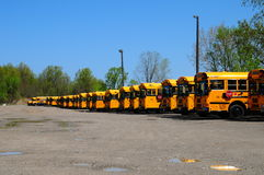 School bus roundup. Image of school busses at a bus roundup in Ohio Stock Photo