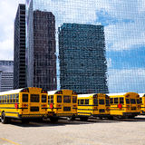School bus row at Houston skyline photo mount Stock Images