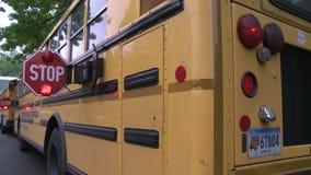 School bus stop signs