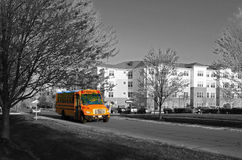 Yellow School Bus. In suburban community during early morning royalty free stock photography
