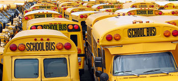 School Bus Yard Royalty Free Stock Images