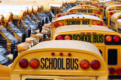 School Bus Yard Stock Photography