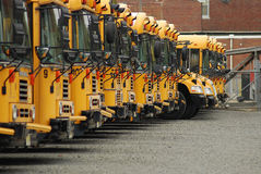 School Buses. A row of parked school buses royalty free stock image