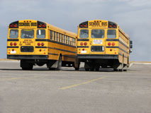 School Buses - 2 (back-end view). A picture of the back end of two school buses in a parking lot. Against a blue sky background Stock Photo