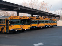 School buses. Parked perfectly and waiting to be used again. Due to latest budget cuts school bus services were severely reduced Royalty Free Stock Photos