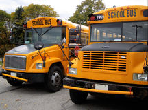 School buses. Front part of parked school buses stock image