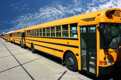School buses. Waiting for students Stock Photography