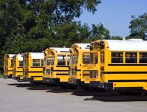 School Buses. Lined up in row from rear stock photography