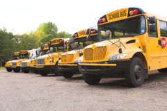 School Buses. A row of school buses in a parking lot royalty free stock photography