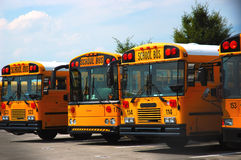 School Buses. Parked at the schoolyard stock image