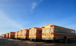 School buses. Many parked school buses with clouds, bright orange color and deep blue sky Royalty Free Stock Image