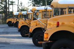 School buses. Row of yellow school buses Royalty Free Stock Image