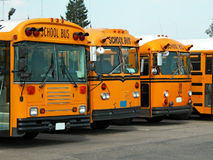 School buses. American school buses in a parking area stock photography